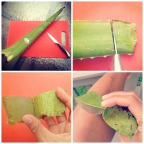 How to use Aloe Vera on Sun-kissedSkin