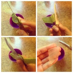 Preparing for Aloe Vera Honey Mask