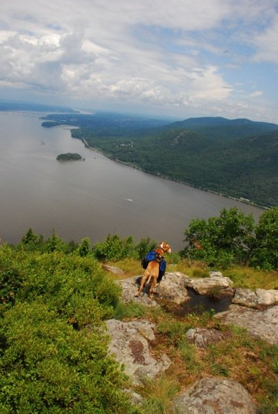 Discover Outdoor's Storm King Hike + Adopt a Pet event